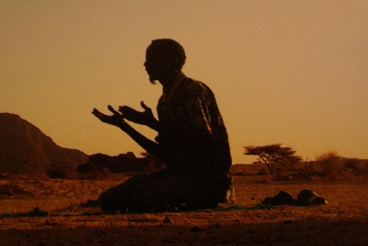 harmful relationship in desert